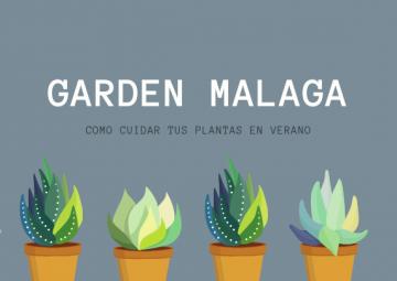 Cuida tu jardín en verano