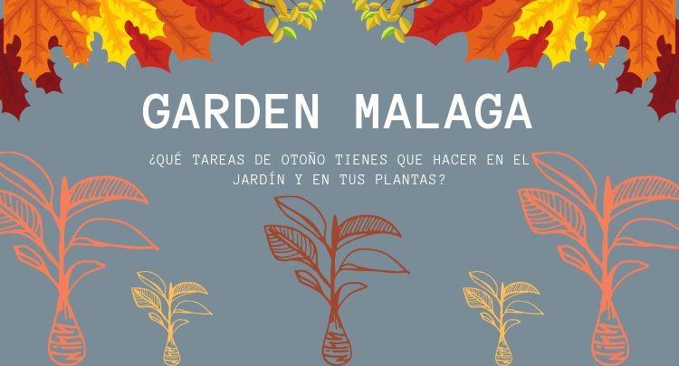 ¿Qué tareas de otoño tienes que hacer en el jardín y en tus plantas?